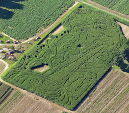 2007 Maze - Satchmo! Louis Armstrong