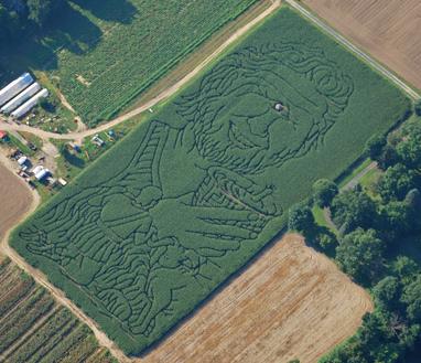 2008 Maze - The Odyssey