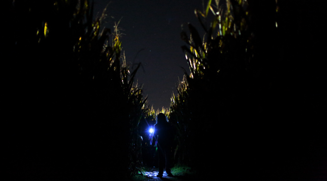 2015-Mikes-Maze_Flashlight