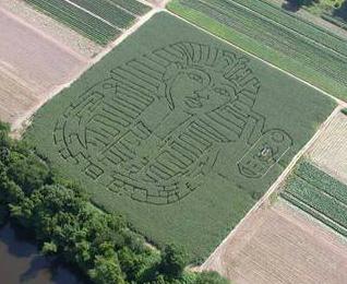 2003 Maze - King Tut