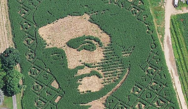 Mike's Maze 2011 - Noah Webster