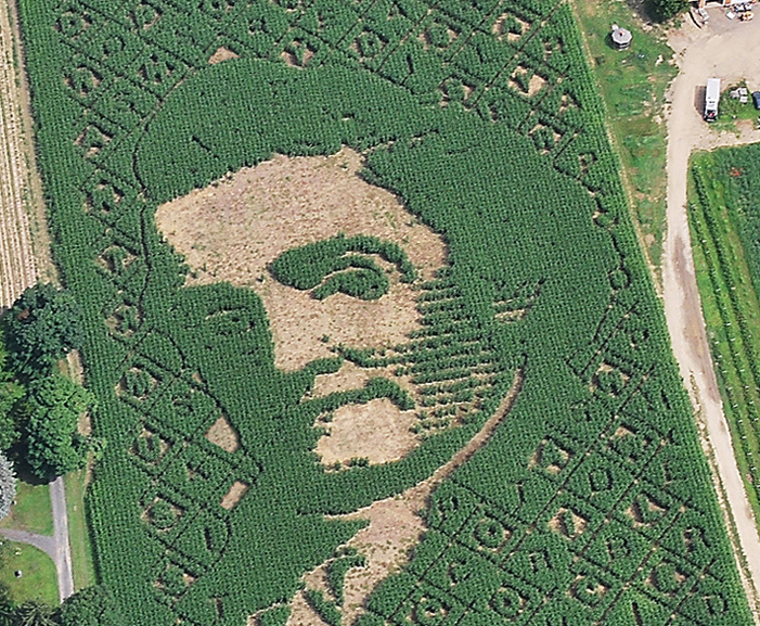 Mike's Maze 2011 - Noah Webster