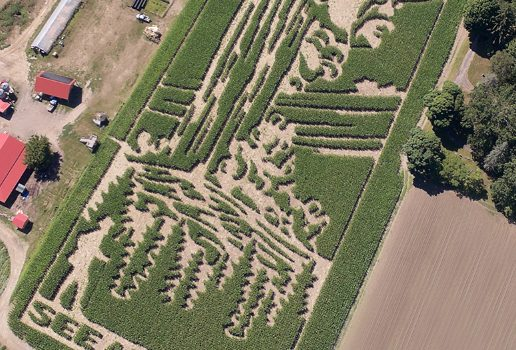 Mike's Maze See America