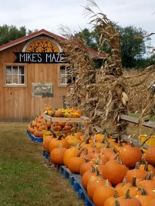 Mike's Maze Open Fridays
